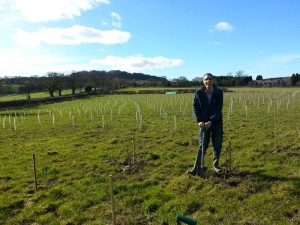 TELFORD BUSINESS PLANTS TREES IN NATIONAL FOREST