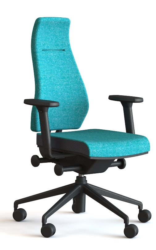 back-care-chairs-IMAGE 53