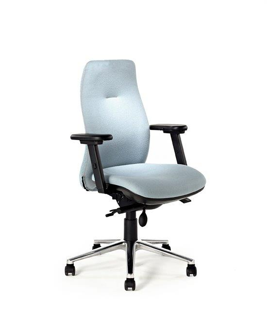back-care-chairs-IMAGE 32.jpg