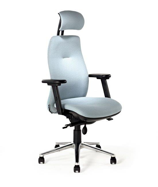 back-care-chairs-IMAGE 35.jpg