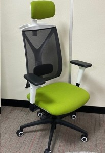 back-care-chairs-IMAGE-55