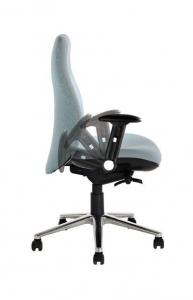 back-care-chairs-IMAGE 31.jpg