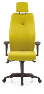 executive-chairs-IMAGE 21