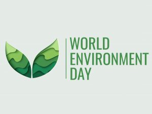 It's World Environment Day…..